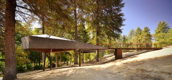 Casas Serpiente del Árbol, en Portugal