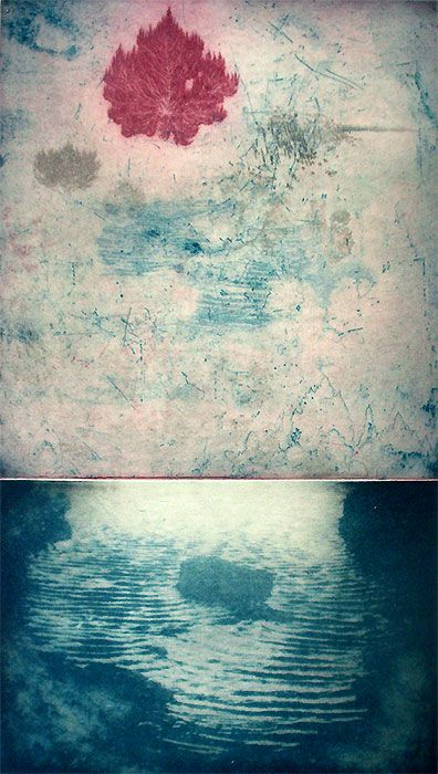 the Quiet Pool by Justin McShane - Printmaker - Tasmanian artist