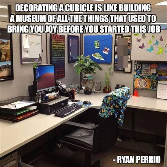 1000 Ideas About Cubicle Humor On Pinterest I Hate My