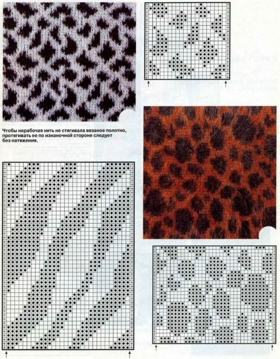 Zebra Print Knitting Pattern : Knit animal print patterns crochet tips tricks