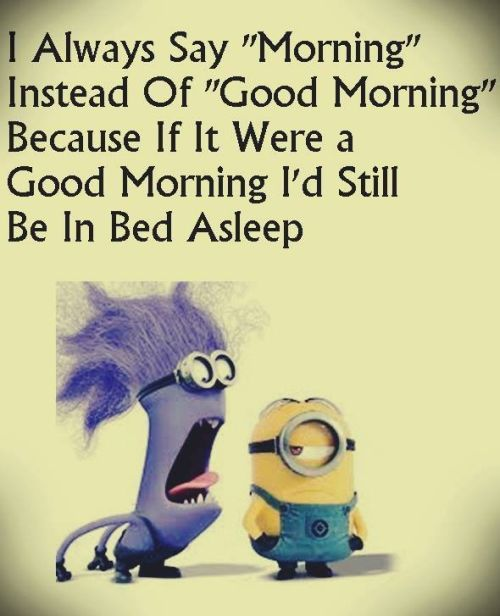 Funny Minions Quotes Of The Day: