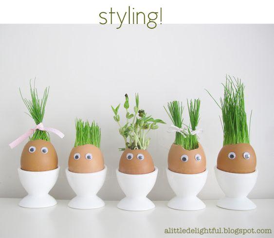 Semear dentro de cascas de ovos