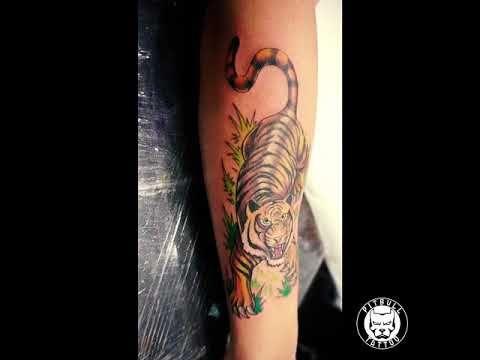 Tiger Tattoo Pitbull Tattoo Best Tattoo Studio In Thailand