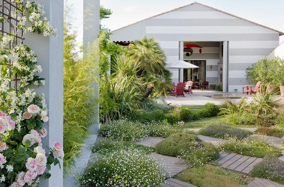 Damier de succulentes au jardin de ville