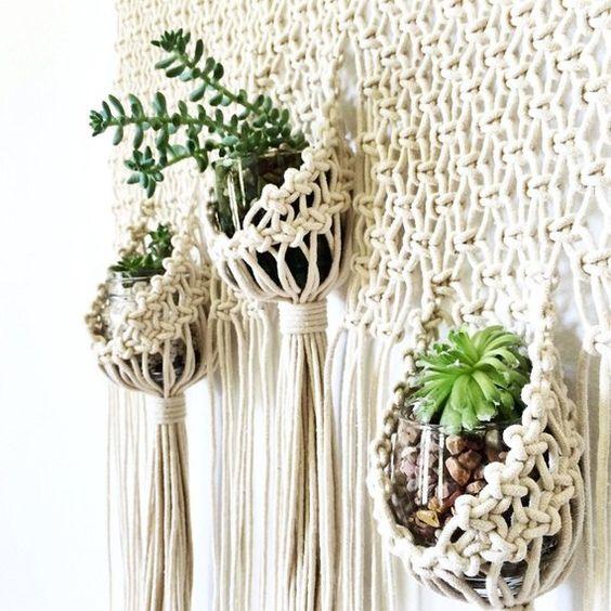Plantes grasses succulentes suspendues sur un support en macramé