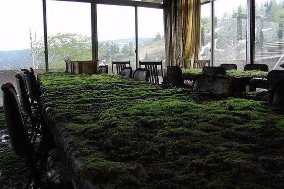 Заброшенный отель в Японии постепенно «съедается» природой
