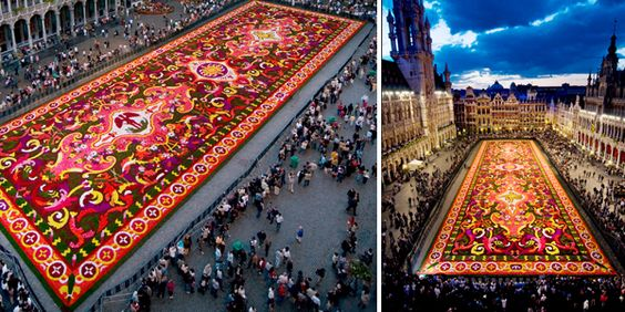 Flower Carpet 2008