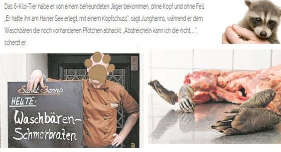 Petition · Thilo Junghanns: Show respect for animals! Take the raccoons immediately from the menu! · Change.org