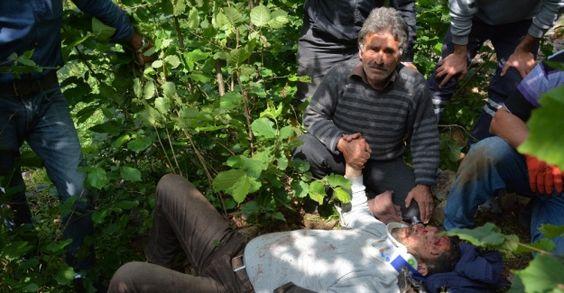 Ordu'da Minibüs uçuruma yuvarlandı: 1 ölü, 5 yaralı