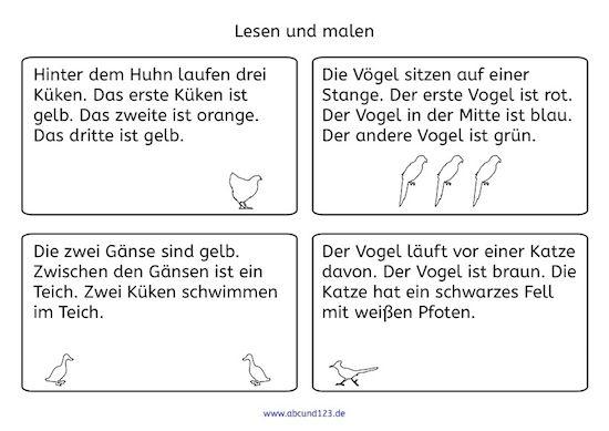 u00dcberall Vu00f6gel: Lesen und malen