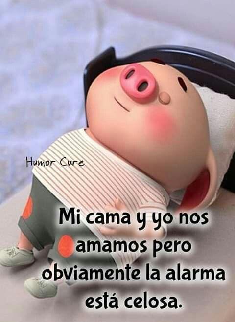 Buenas Noches Frases De Buen Humor Imagenes Graciosas Frases