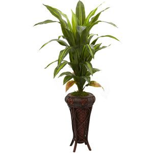 "Nearly Natural 57"" Dracaena w/Stand Silk Plant (Real Touch)"