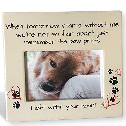 Banberry Designs Pet Memorial Frame When Tomorrow Start Https Www Amazon Com Dp B00gvdn1oc Ref Cm Sw R Pi Pet Memorial Frames Pet Sympathy Pet Memorials