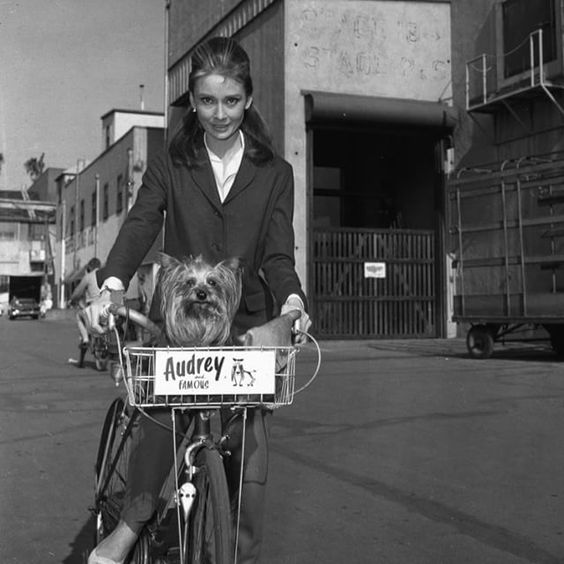 Audrey and Mr. Famous riding on the Paramount set of Breakfast at Tiffany's