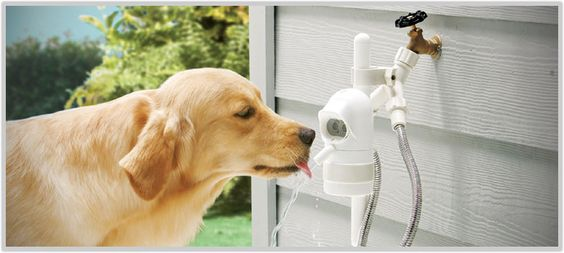 WaterDog - The Automatic Outdoor Pet Fountain