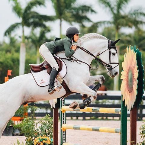 Natalie Suto Nataliesutophotography Instagram Photos And Videos Horseridingstyle Equestrianfashion Equestrianlifest Show Jumping Horses Horses Horse Love
