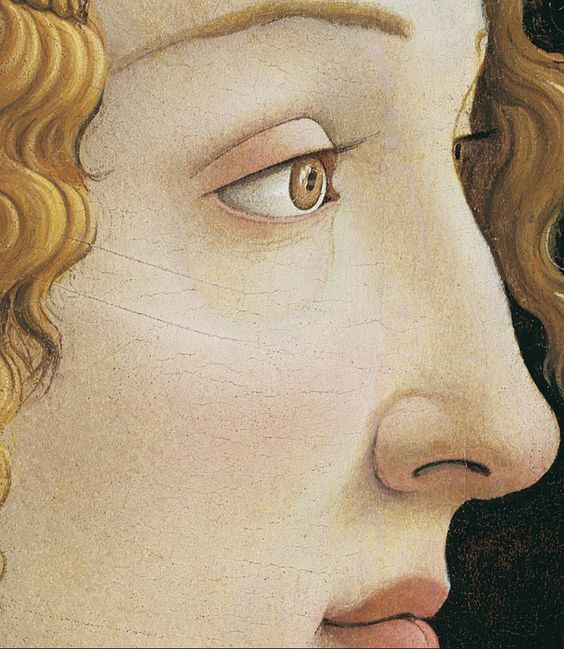 Idealized Portrait of a Lady, or Portrait of Simonetta Vespucci as Nymph (detail), by Sandro Botticelli, ca.1475. Tempera on panel | Städelsches Kunstinstitut, Frankfurt am Mai