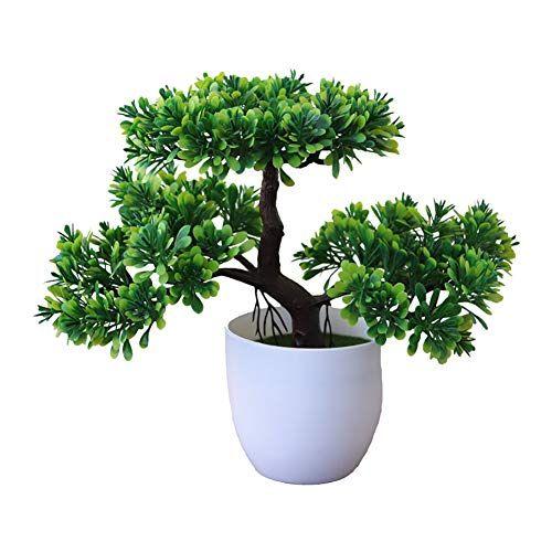 Epingle Sur Decoration Plante