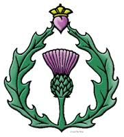 Image result for Transparent thistle decals