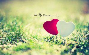 New Whatsapp Dp Photo Hd Download Best Love Wallpaper Romantic Love Sms Love Sms