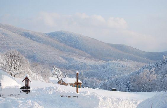 Khung cảnh đẹp như trong tranh ở tranh trại nuôi cừu tại Daegwallyeong