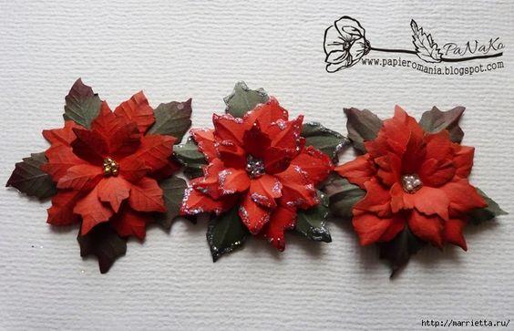 Noël étoile en papier Poinsettia.  Modèles patron dessin