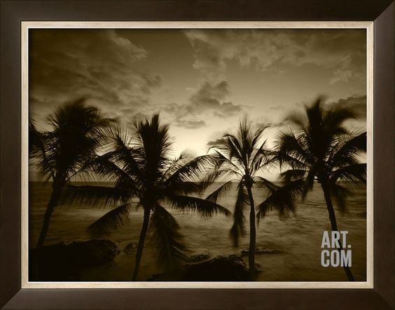 View Palm Trees on Beach, Big Islands, Kona, Hawaii, USA Photographic Print by Stuart Westmorland at Art.com