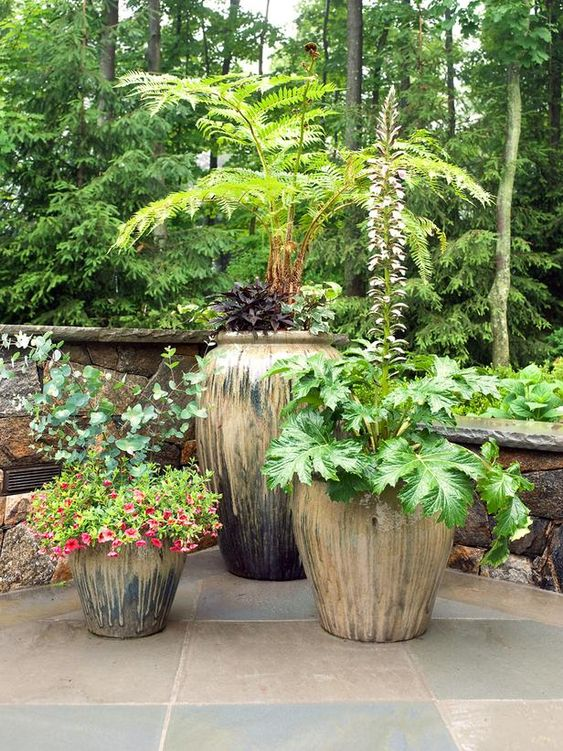 soften corners of your patio with a cluster of potted