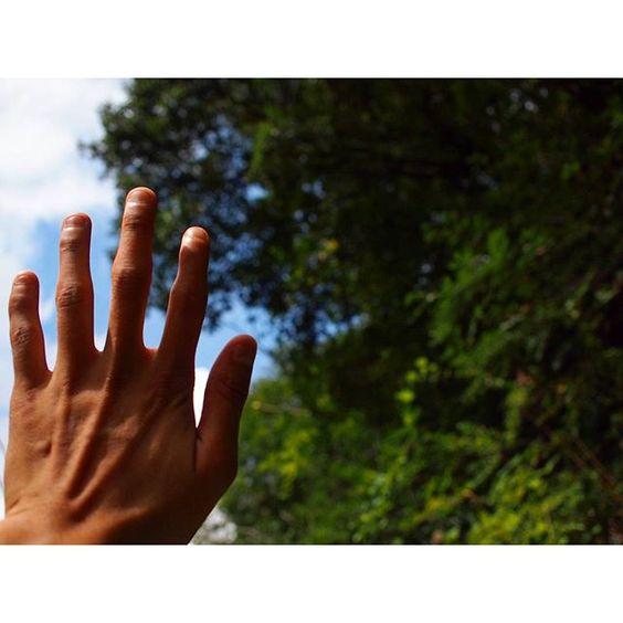 【syota330】さんのInstagramをピンしています。 《手がある幸福  #ファインダー越しの私の世界  #一眼レフ #山 #バイク #ツーリング #記録 #写真好きな人と繋がりたい #一人旅 #sonyalpha #おしゃれ #Kawasaki #森  #photography #自然 #green #forest #カメラマンさんと繋がりたい #japan #日本 #motorcycle #非日常 #風景 #park #japanese #olympus #wood #flowers #nature #花》