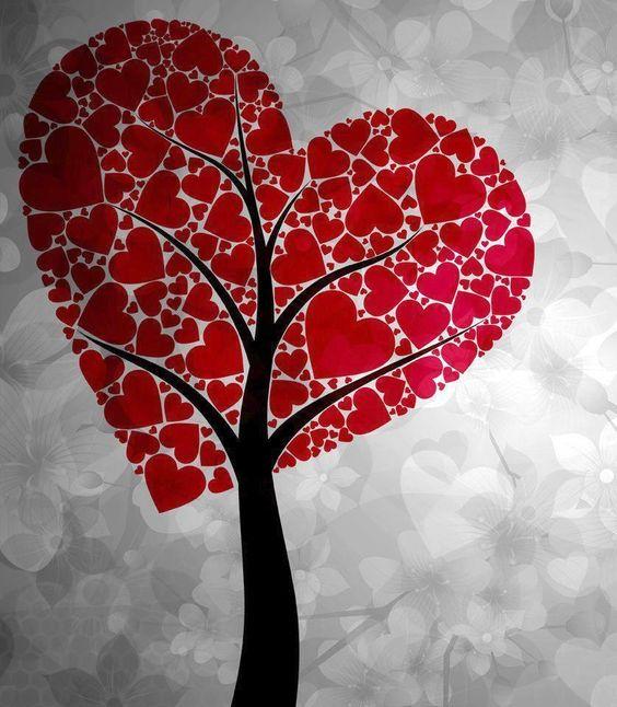 Mi corazon? Por fin encontre el arbol que dio fruto a este gran amor que siento....