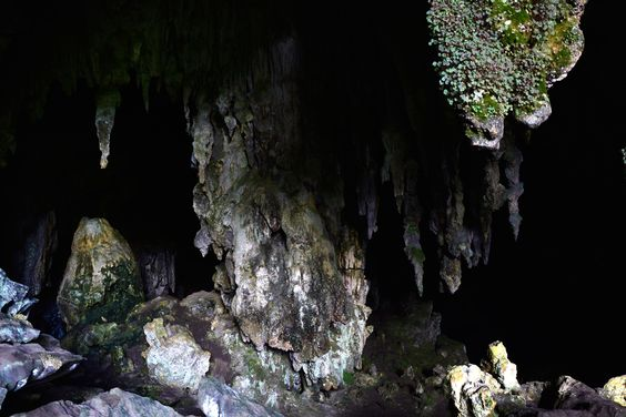 PETAR, Parque Estadual Turístico do Alto Ribeira, São Paulo, Brasil, Núcleo Santana, Caverna de Morro Preto