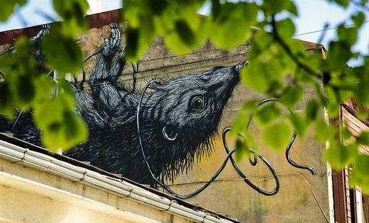 Foto: Ieskats ielu mākslas festivālā 'Blank Canvas: art-ground, play-ground, crime-ground'