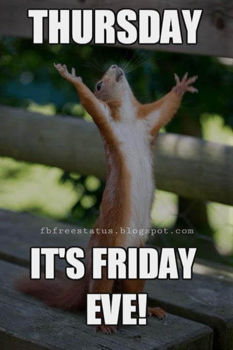 Funny Happy Thursday : funny, happy, thursday, Memes