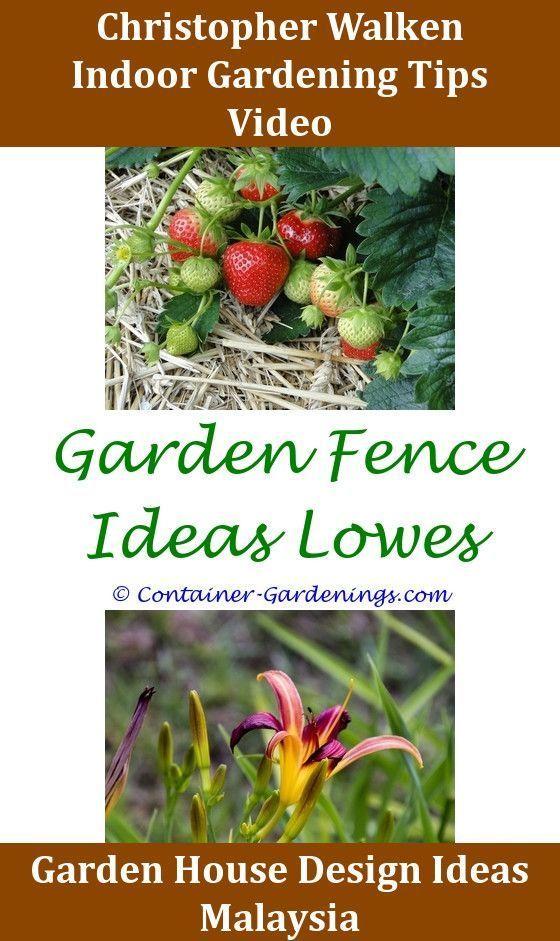 Vegetable Gardening Primer Vegetable Gardening Small Vegetable