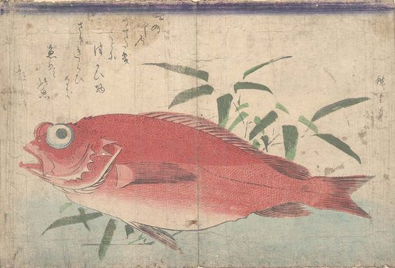 Large-eye seabream and bamboo grass