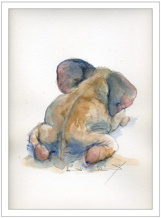 Angela Sheldrick's Latest Water Colour (The David Sheldrick Wildlife Trust, David Sheldrick Elephant Orphanage, David Sheldrick Wildlife Orphan Trust, all on Facebook.):