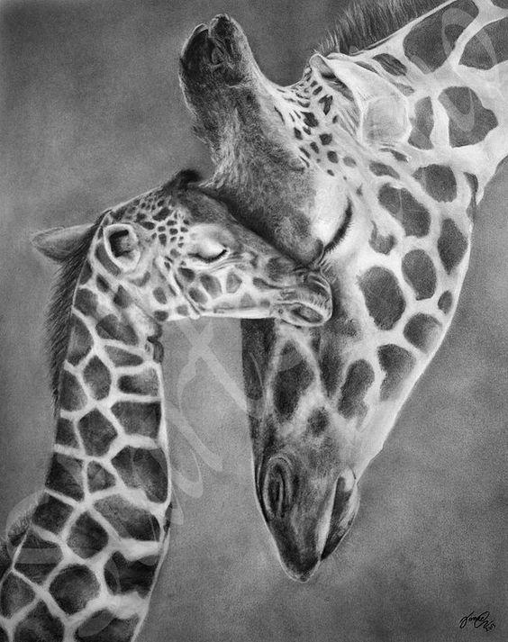 Mothers Love by JamiePickering on @DeviantArt