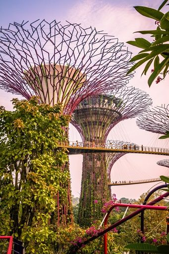 """The """"Hanging bridge"""" at Gardens by the Bay, in Singapore (Photo by: Jirka Matousek) 
