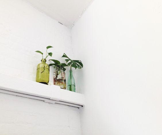 3 Vasen by Sasha Ritter via Kelsey Perry