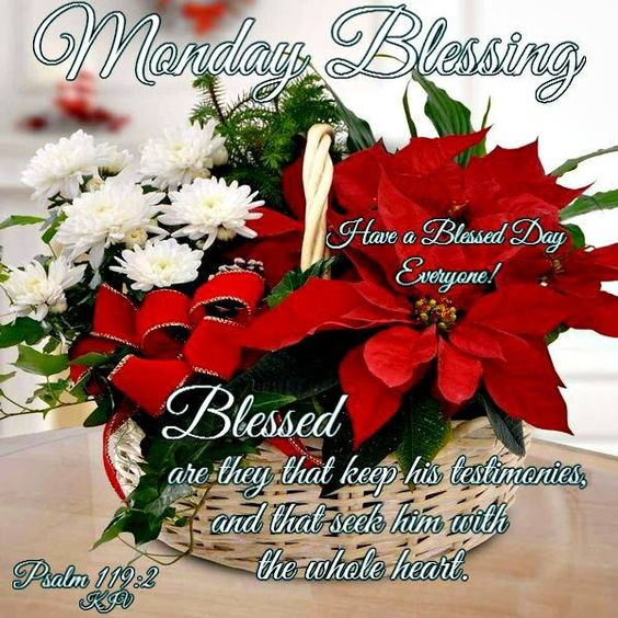 """MONDAY BLESSING: Psalm 119:2 (1611 KJV !!!!) """" Blessed are they that keep his testimonies, and that seek him with their whole heart."""" HAVE A VERY BLESSED DAY EVERYONE !!!!"""