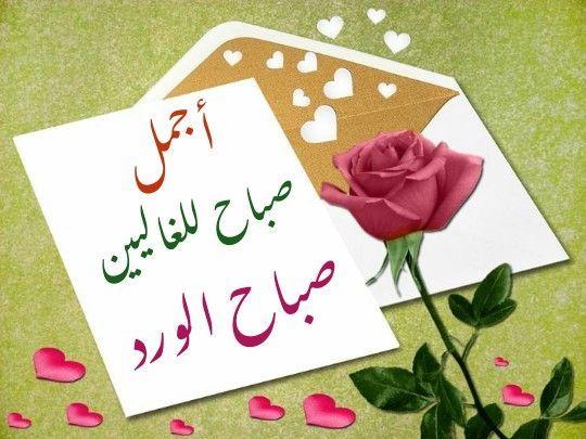 صباح الخير عبارات صباح الورد للغالين مجلة رجيم