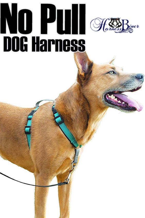 No Pull Dog Harness Stops Pulling Reduce Or Stop Pulling With The