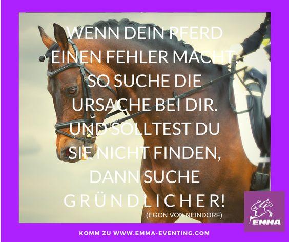 pferdesprüche, www.emma-eventing | so wahr! | pinterest