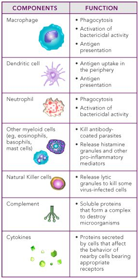 Immunologist cirugía Pinterest Health, Charts and Physiology
