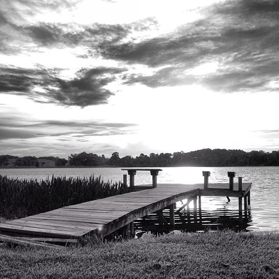 Swim at your own risk #blackandwhite #sunset #nature #photooftheday Photo by ahhphoto