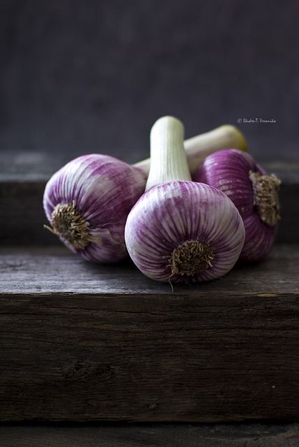 Fresh Garlic by Studer T.V. - Veronika Studer