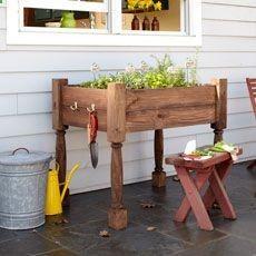 I'm thinking herb garden