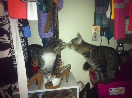Kissin in the Closet