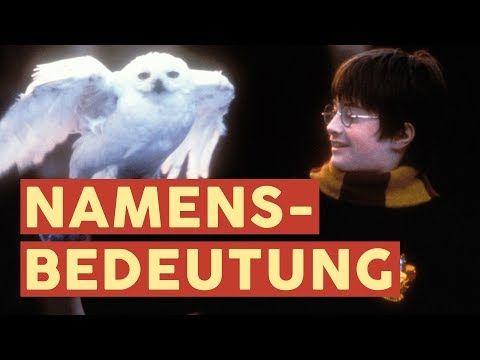 Sirius Minerva Und Co Was Bedeuten Die Namen Aus Harry Potter Filme Youtube Movie Posters Movies Poster
