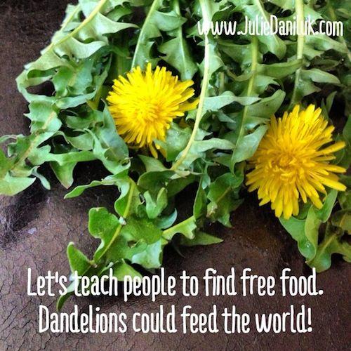 Dandelion Facts